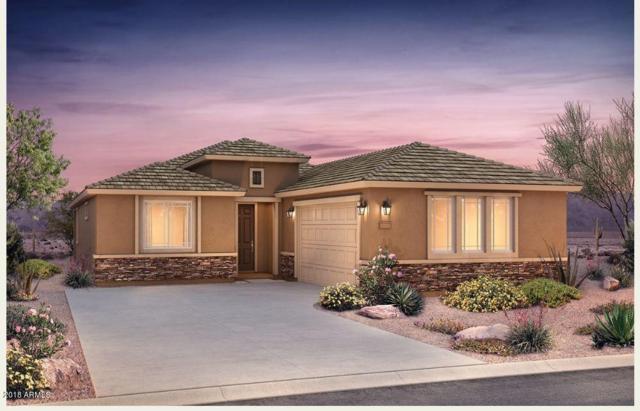 26061 W Matthew Drive, Buckeye, AZ 85396 (MLS #5856576) :: Scott Gaertner Group