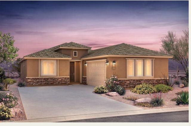 26076 W Matthew Drive, Buckeye, AZ 85396 (MLS #5856587) :: Scott Gaertner Group