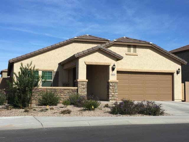 10830 E Topaz Avenue, Mesa, AZ 85212 (MLS #5856590) :: My Home Group