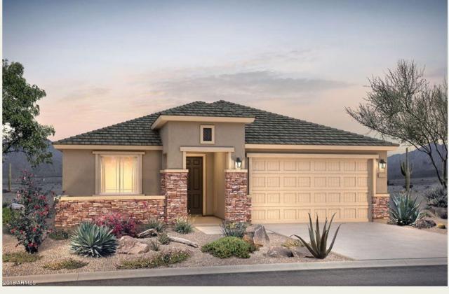 26022 W Matthew Drive, Buckeye, AZ 85396 (MLS #5856598) :: Arizona 1 Real Estate Team