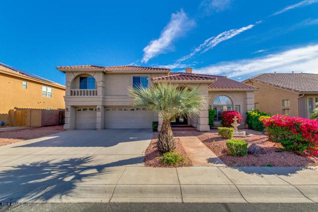 5905 N 133RD Avenue, Litchfield Park, AZ 85340 (MLS #5856604) :: Kortright Group - West USA Realty