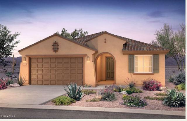 26050 W Quail Avenue, Buckeye, AZ 85396 (MLS #5856615) :: The Results Group