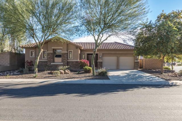10019 N 183rd Avenue, Waddell, AZ 85355 (MLS #5856629) :: Kepple Real Estate Group