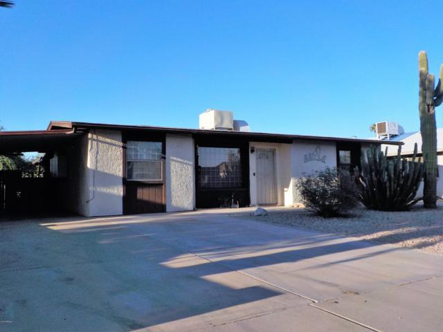 430 W Santa Cruz Drive, Tempe, AZ 85282 (MLS #5856636) :: The W Group