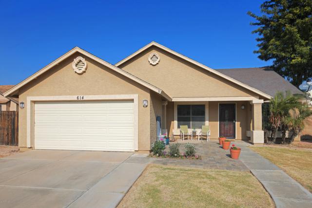 614 W Wagner Court, Gilbert, AZ 85233 (MLS #5856643) :: Kepple Real Estate Group