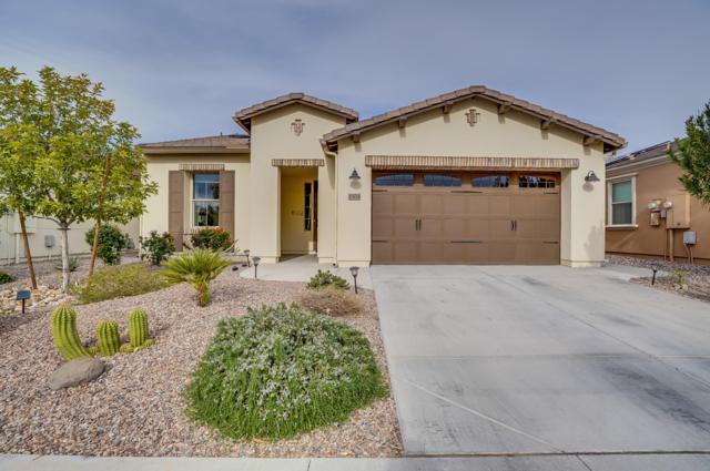 1304 E Elysian Pass, San Tan Valley, AZ 85140 (MLS #5856653) :: Kepple Real Estate Group