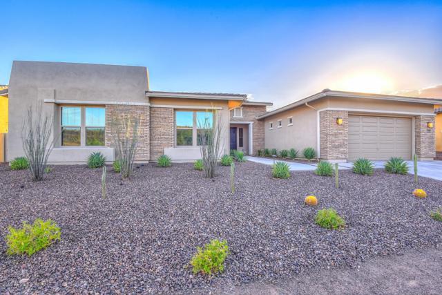 30544 N 117TH Drive, Peoria, AZ 85383 (MLS #5856670) :: Kepple Real Estate Group