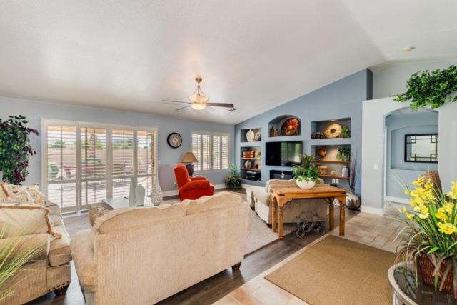 9115 E Coopers Hawk Drive, Sun Lakes, AZ 85248 (MLS #5856694) :: Conway Real Estate