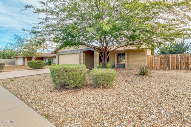 17613 N 57TH Avenue, Glendale, AZ 85308 (MLS #5856710) :: Occasio Realty
