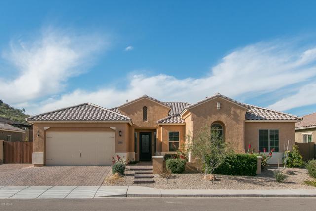 27586 N 99TH Drive, Peoria, AZ 85383 (MLS #5856738) :: Kepple Real Estate Group