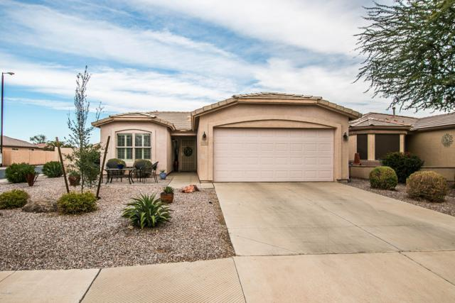 3790 E Gleneagle Place, Chandler, AZ 85249 (MLS #5856746) :: Kepple Real Estate Group