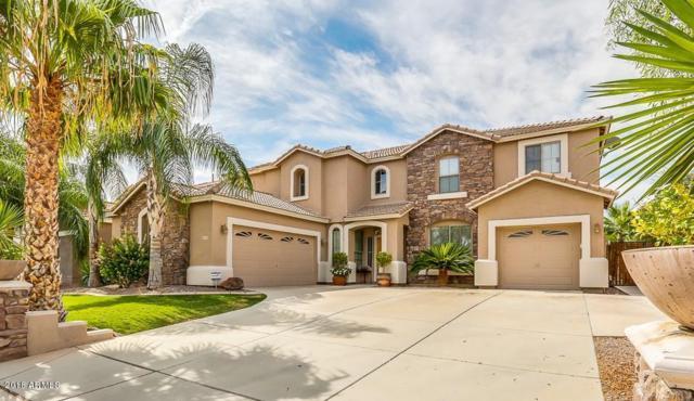 11433 E Rafael Avenue, Mesa, AZ 85212 (MLS #5856747) :: Kepple Real Estate Group