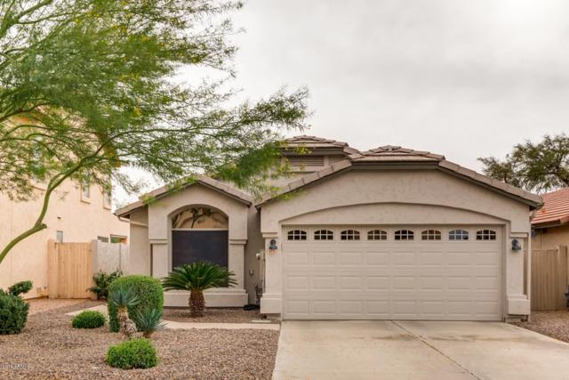 4735 E Abraham Lane, Phoenix, AZ 85050 (MLS #5856763) :: Gilbert Arizona Realty