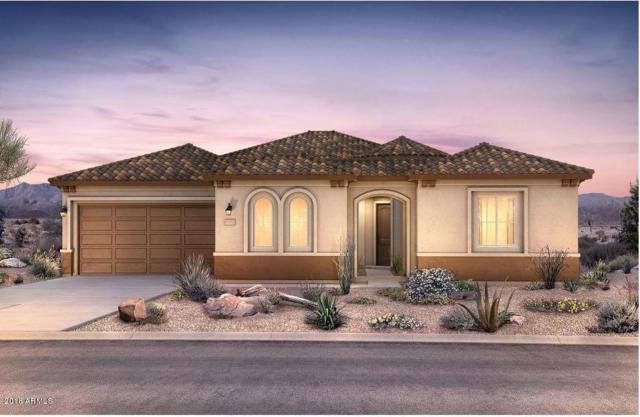 27562 W Yukon Drive, Buckeye, AZ 85396 (MLS #5856778) :: CC & Co. Real Estate Team
