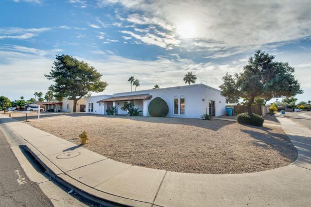 5831 E Thunderbird Road, Scottsdale, AZ 85254 (MLS #5856779) :: Kepple Real Estate Group