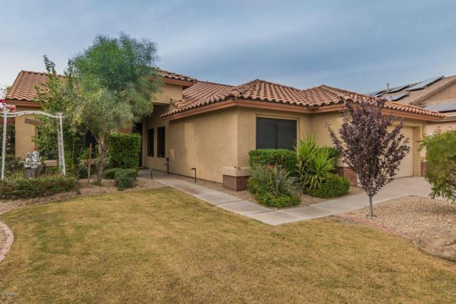 22012 N 44TH Place, Phoenix, AZ 85050 (MLS #5856789) :: Group 46:10