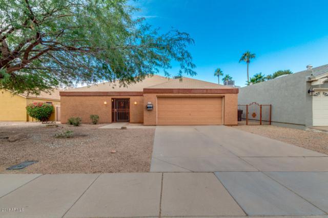 2432 N 87TH Terrace, Scottsdale, AZ 85257 (MLS #5856851) :: Lifestyle Partners Team