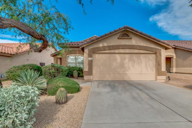 5112 E Roy Rogers Road, Cave Creek, AZ 85331 (MLS #5856856) :: Kortright Group - West USA Realty