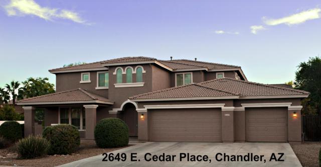 2649 E Cedar Place, Chandler, AZ 85249 (MLS #5856880) :: Phoenix Property Group