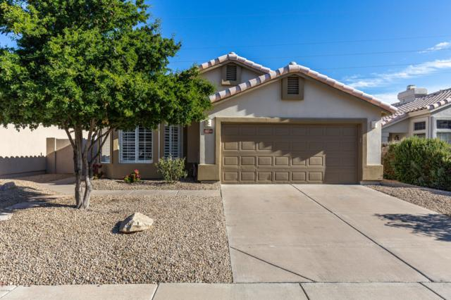 31239 N 41ST Street, Cave Creek, AZ 85331 (MLS #5856912) :: Occasio Realty