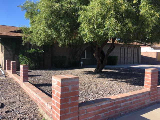 11032 N 39TH Drive, Phoenix, AZ 85029 (MLS #5856925) :: Realty Executives