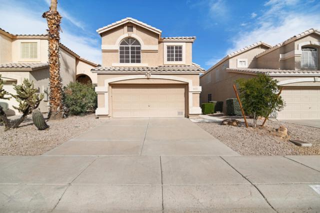 2174 E Briarwood Terrace, Phoenix, AZ 85048 (MLS #5856927) :: Realty Executives