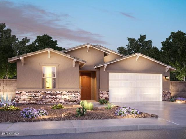 12347 W Myrtle Avenue, Glendale, AZ 85307 (MLS #5856944) :: Conway Real Estate
