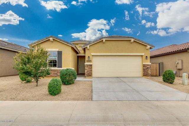 4891 E Velasco Street, San Tan Valley, AZ 85140 (MLS #5856968) :: Yost Realty Group at RE/MAX Casa Grande