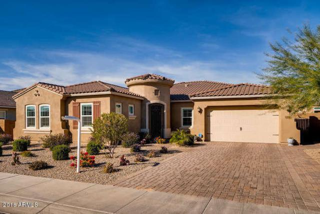 14578 W Oregon Avenue, Litchfield Park, AZ 85340 (MLS #5856981) :: The Everest Team at My Home Group