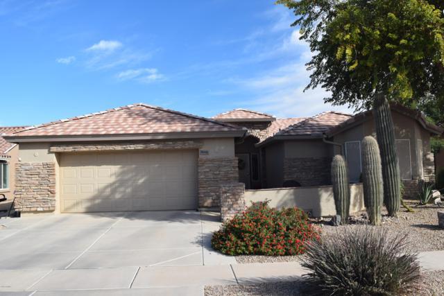 2646 E Golden Trail, Casa Grande, AZ 85194 (MLS #5857025) :: Keller Williams Legacy One Realty