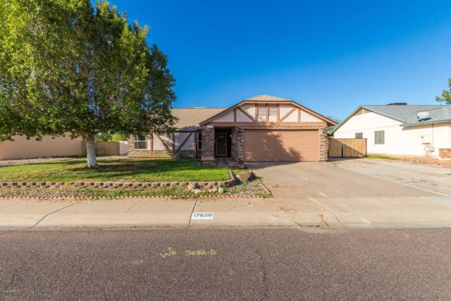 17620 N 42ND Lane, Glendale, AZ 85308 (MLS #5857050) :: Occasio Realty