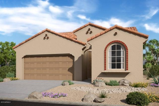 10742 W Sierra Pinta Drive, Sun City, AZ 85373 (MLS #5857069) :: Occasio Realty