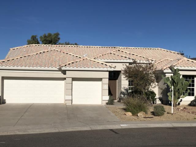 22370 N 64TH Avenue, Glendale, AZ 85310 (MLS #5857090) :: Yost Realty Group at RE/MAX Casa Grande