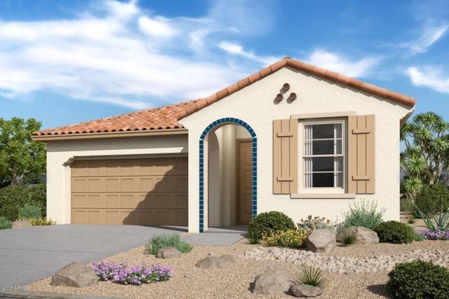 10738 W Sierra Pinta Drive, Sun City, AZ 85373 (MLS #5857092) :: The Daniel Montez Real Estate Group