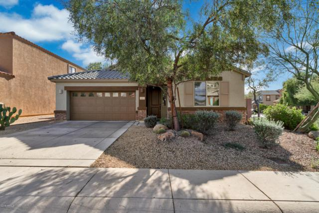 4011 E Casitas Del Rio Drive, Phoenix, AZ 85050 (MLS #5857111) :: Kelly Cook Real Estate Group