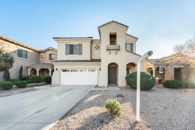 4389 E Alamo Street, San Tan Valley, AZ 85140 (MLS #5857114) :: Yost Realty Group at RE/MAX Casa Grande