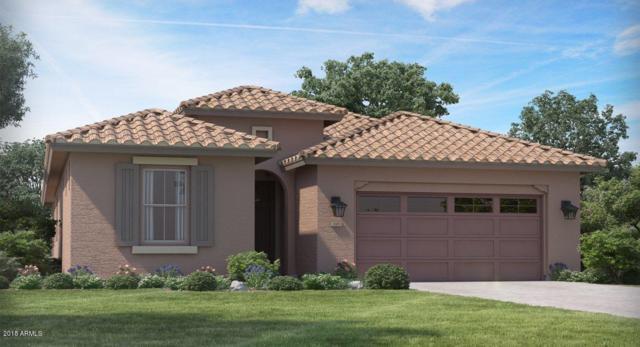 18518 W Desert Trumpet Road, Goodyear, AZ 85338 (MLS #5857121) :: Kortright Group - West USA Realty