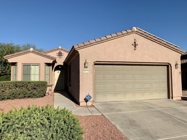 16724 W Villa Lane, Surprise, AZ 85387 (MLS #5857136) :: Lucido Agency
