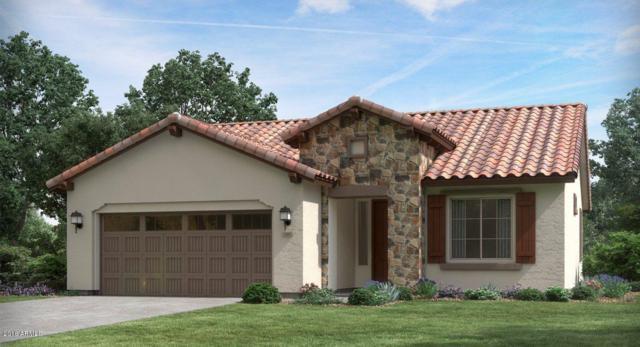 4701 N 204TH Avenue, Buckeye, AZ 85396 (MLS #5857175) :: The Results Group