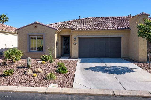 4007 N 163RD Drive, Goodyear, AZ 85395 (MLS #5857199) :: Kortright Group - West USA Realty