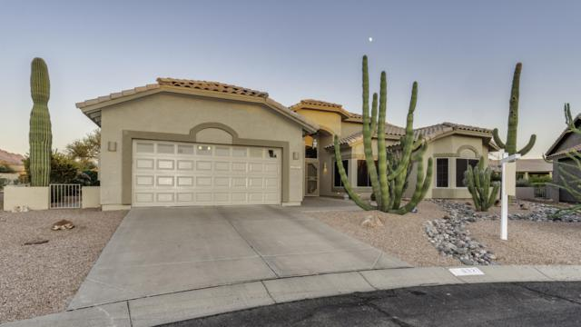 6321 S Niblick Court, Gold Canyon, AZ 85118 (MLS #5857200) :: The Pete Dijkstra Team