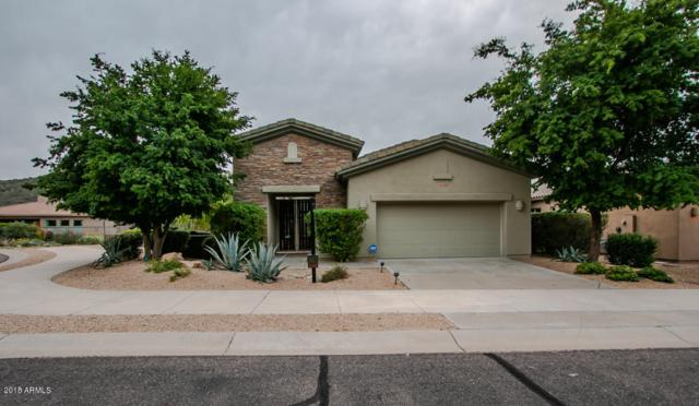 14125 E Coyote Road, Scottsdale, AZ 85259 (MLS #5857215) :: Conway Real Estate