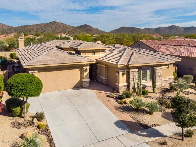 1730 W Dusty Wren Drive, Phoenix, AZ 85085 (MLS #5857233) :: The Daniel Montez Real Estate Group