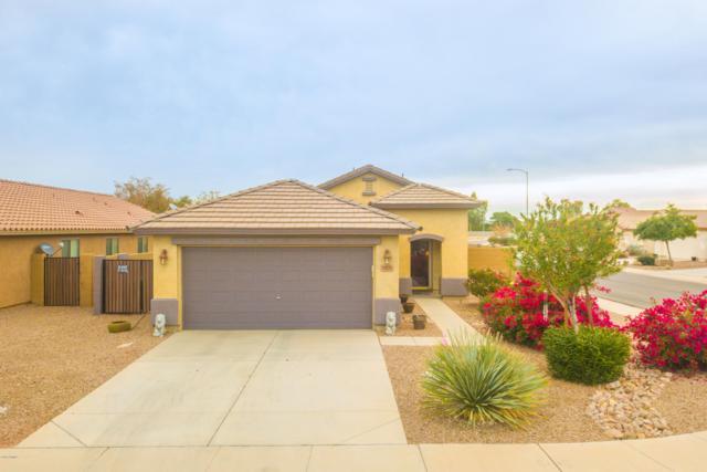 19271 N Ibiza Lane, Maricopa, AZ 85138 (MLS #5857245) :: Yost Realty Group at RE/MAX Casa Grande