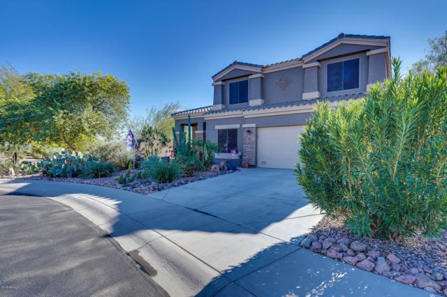 1225 W Falls Canyon Drive, Casa Grande, AZ 85122 (MLS #5857265) :: Yost Realty Group at RE/MAX Casa Grande