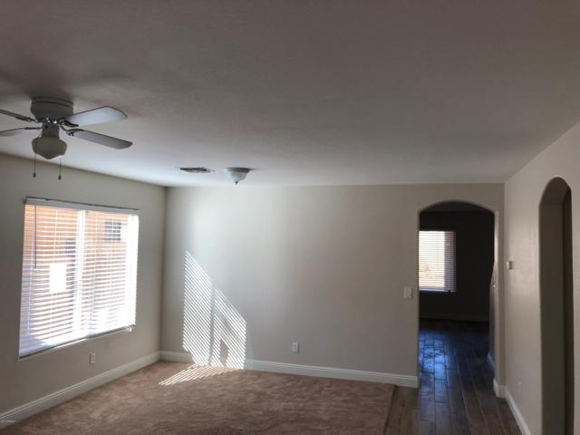 728 E Payton Street, San Tan Valley, AZ 85140 (MLS #5857269) :: Yost Realty Group at RE/MAX Casa Grande