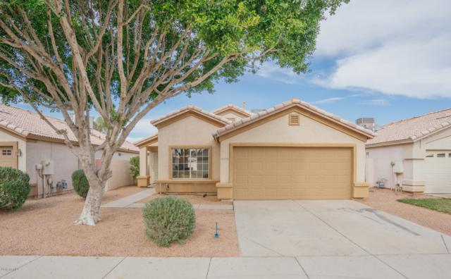 10426 W Windsor Boulevard, Glendale, AZ 85307 (MLS #5857279) :: Kortright Group - West USA Realty