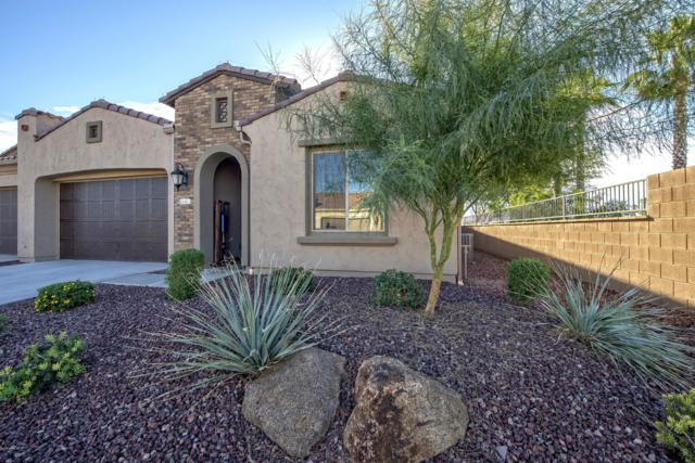 16463 W Piccadilly Road, Goodyear, AZ 85395 (MLS #5857281) :: Kortright Group - West USA Realty