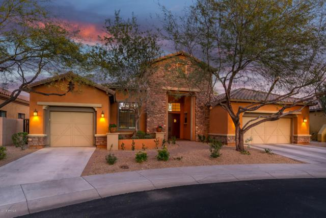9995 E Ridgerunner Drive, Scottsdale, AZ 85255 (MLS #5857292) :: The Everest Team at My Home Group