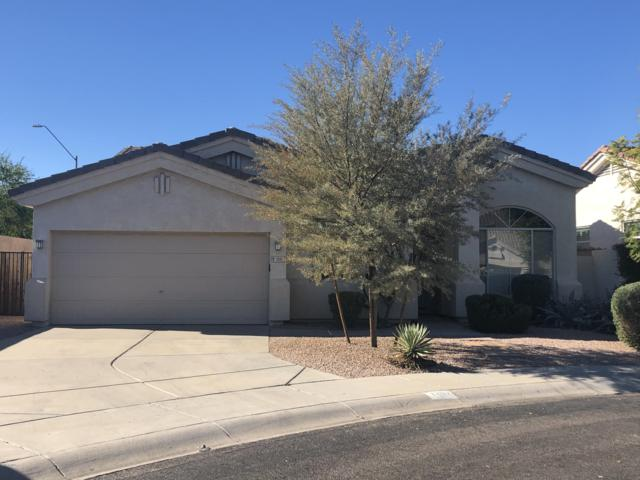 1207 W Betty Elyse Lane, Phoenix, AZ 85023 (MLS #5857306) :: RE/MAX Excalibur